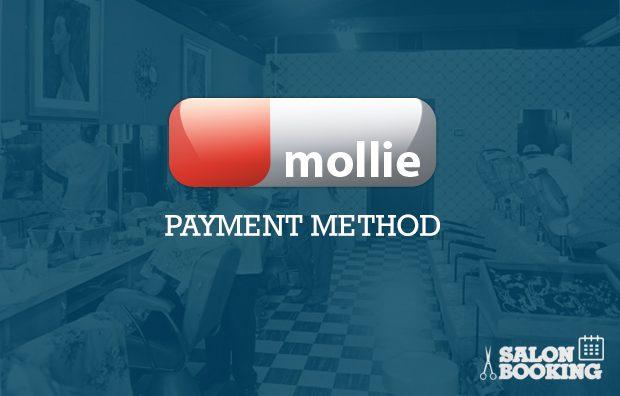 salon-booking-mollie-payment-method